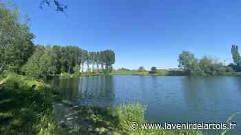 Etangs de pêche de Nieppe : à quoi ressemblera le projet - L'Avenir de l'Artois