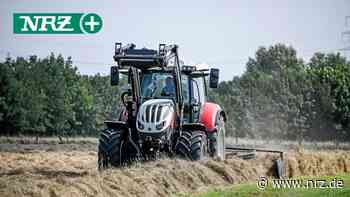 Bauern in Wesel und Umgebung rechnen mit guter Ernte - NRZ