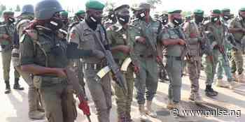 Police kill notorious bandit, rescue 11 kidnapped victims in Zamfara - Pulse Nigeria