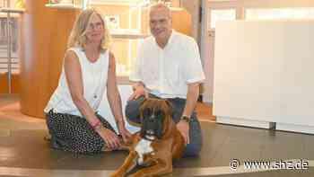 Serie Tiere im Büro: Bei Juwelier Albers aus Itzehoe liegt ein Hund im Schaufenster | shz.de - shz.de