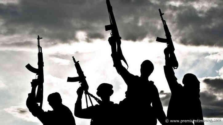 Bandits free 28 kidnapped Kaduna school students - Premium Times - Premium Times