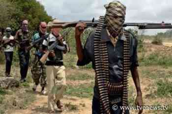 Just In: Bandits abduct dozens of travellers along Sokoto-Gusau highway - TVC News