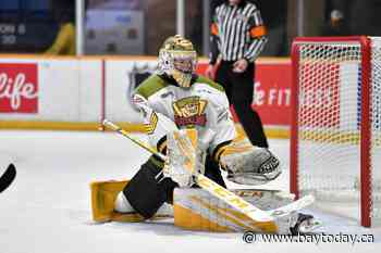 Battalion players go to Oilers and Canadiens - BayToday.ca