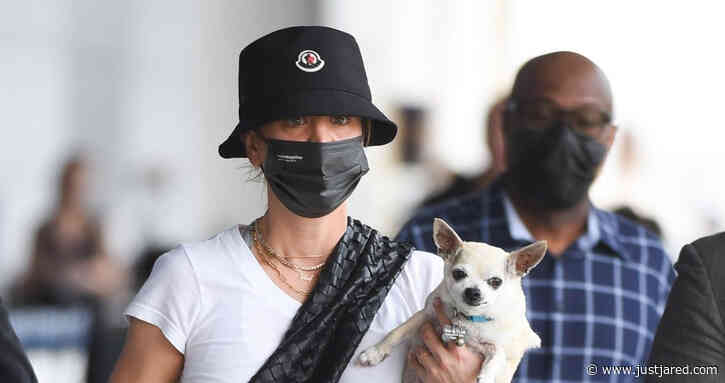 Kaley Cuoco Lands in NYC with Her Dog Dumps