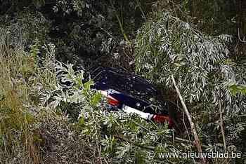 Auto belandt in struiken naast snelweg