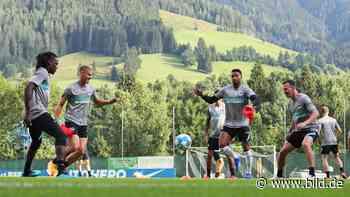 Hertha BSC: BILD macht den ersten Kader-Check - BILD