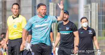 Hertha BSC: Pal Dardai schlägt Alarm und nimmt Fredi Bobic in die Pflicht - SPORT1