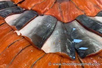 Pink salmon catch boosts Prince William Sound harvest - The cordova Times