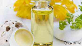 Pflanzenöle für die Körperpflege: Diese Öle sind gut für Haut und Haar - Utopia News