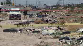 Localizaron cadáver en predio de Cerradas de San Pedro. - Canal 44 - Canal 44 El Canal de las Noticias