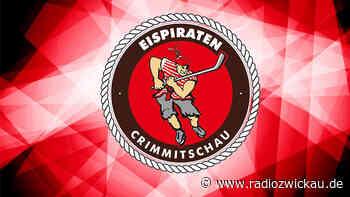 DEL2-Spielplan veröffentlicht: Eispiraten starten in Heilbronn - Radio Zwickau