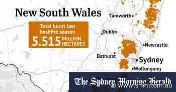 Fires ravaged not only plants and animals, but the soils beneath them - Sydney Morning Herald