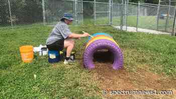 Rescue Rebuild installs new play areas for shelter animals - Spectrum News 1