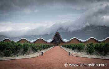 Ysios: vinos singulares y enraizados en el corazón de Rioja Alavesa - Tecnovino.com
