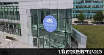 Thérapie Medical to open three fertility clinics in Dublin and Kildare - The Irish Times