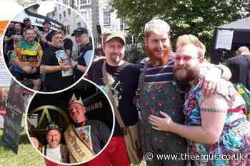 Brighton Bear Weekend 2021: Mr Brighton Bear announced