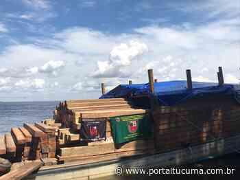 Em Manacapuru, 80 metros cúbicos de madeira ilegal são apreendidos em madereira - Portal Tucumã