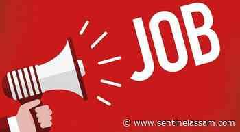 Tripura SCST Recruitment 2021 - 21 Project Coordinator, Project Assistant Vacancy, Latest Jobs -... - The Sentinel Assam