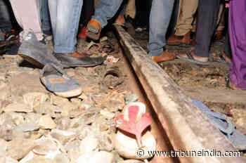 Dussehra train tragedy: Punjab govt gives jobs to victims' kin - The Tribune India