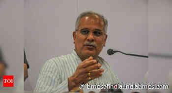 Those who got govt jobs on fake caste certificates to be sacked, says Chhattisgarh CM Bhupesh Baghel - Times of India