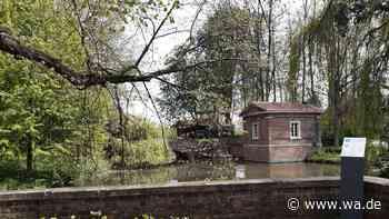 Schloss Drensteinfurt ist Teil des historischen Stadtrundgangs - wa.de