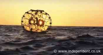 Man washes ashore after trying to 'run' from Florida to New York in floating wheel