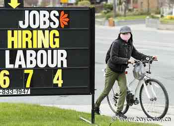 StatCan data shows youth unemployment rates have risen during the COVID-19 pandemic.