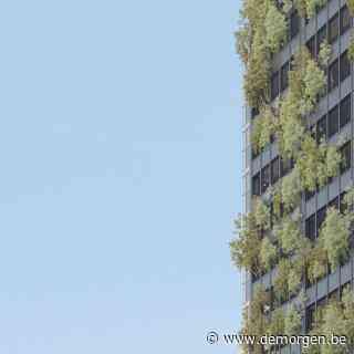 Iconische hotelketen The Standard moet betonwoestijn in Brusselse noordwijk reanimeren