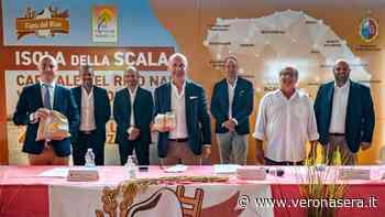 Covid si mangia anche la Fiera del Riso di Isola della Scala, rinviata al 2022 - VeronaSera