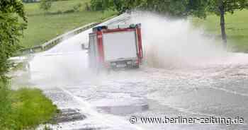 Brandenburg: Baum stürzt auf drei Boote – ein Verletzter - Berliner Zeitung