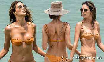 Alessandra Ambrosio sets pulses racing in a barely-there bikini