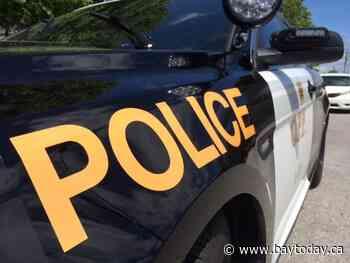 Combined police effort leads to drug seizure