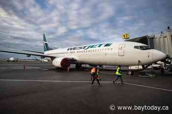 WestJet signs code share agreement with Dutch airline KLM
