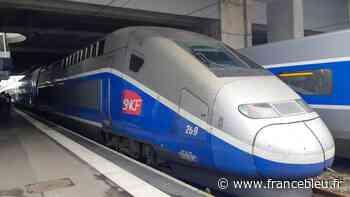 Aucun train entre Paris et La Rochelle après la mort d'un ouvrier à Paris - France Bleu