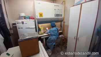Coronavirus: se registraron 84 nuevos casos en Tandil - El diario de Tandil