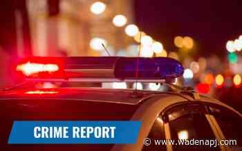 Wadena crime report: July 20-25 - Wadena Pioneer Journal