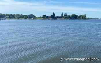 Hunt continues for elusive, fabled 'Lake Kampeska Monster' - Wadena Pioneer Journal
