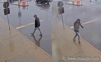 Police looking for man who stole a computer from a Burlington electronics store - insauga.com