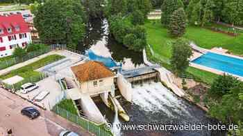 Sanierung in Nagold - Mehr Geld fürs Wasserkraftwerk Rentschler - Schwarzwälder Bote