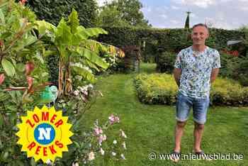 Palmbomen, bananen en vleesetende planten: in de tuin van Geert waan je je in het Zuiden