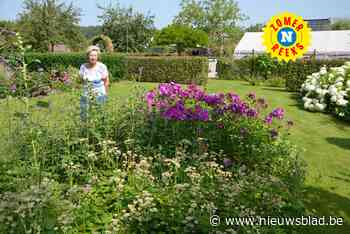 """Nicole maakte van haar weide een tuin om letterlijk van te snoepen: """"Ik bezocht altijd tuinen in binnen- en buitenland, maar zelf had ik er nog geen"""""""