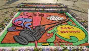 Porto: Cinco paróquias de Espinho fizeram tapetes alusivos ao Caminho de Santiago (c/fotos) - Agência ECCLESIA - Agência Ecclesia