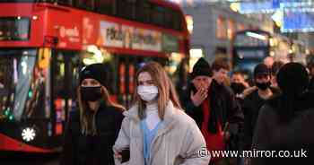 'Bulk of Covid pandemic will be behind us' by late September, says expert