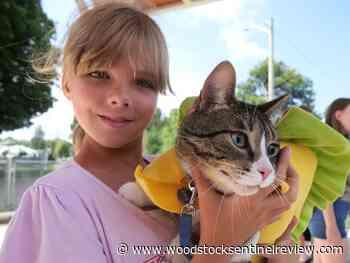 Tillsonburg Fair postponed for a second year - Woodstock Sentinel Review