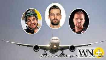 Trio der Grizzlys Wolfsburg trifft sich bereits im Flugzeug - Wolfsburger Nachrichten