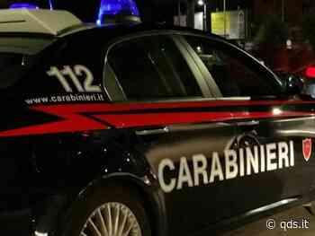 Bagheria, serra indoor con 200 piante cannabis, arrestato un 30enne - Quotidiano di Sicilia