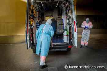 La incidencia por Covid en Jaén sube 35 puntos al sumar 529 contagios - Lacontradejaen