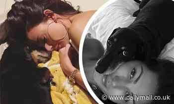 Michelle Keegan shares adorable snaps of her beloved pooch Phoebe