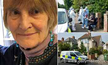 Murder probe is launched after great-grandmother, 83, vanished