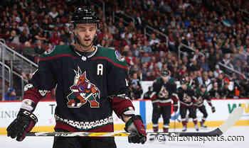 Arizona Coyotes defenseman Niklas Hjalmarsson is expected to retire - Arizona Sports